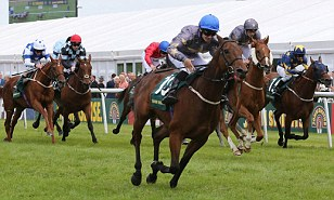 Todays Top Tips From The Top Horse Racing Tips Blog